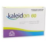 KALEIDON 60 12BUST